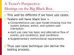 a tester s perspective musings on the big black box1