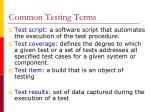 common testing terms1