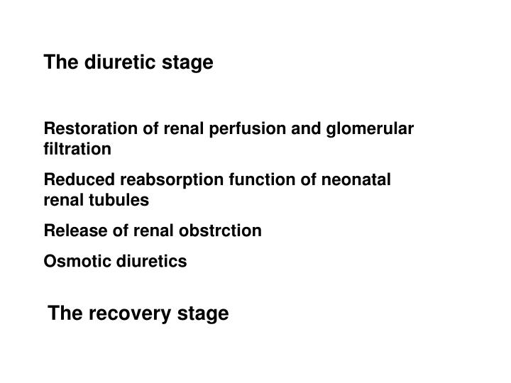 The diuretic stage