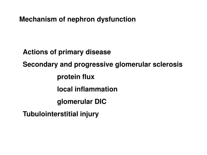 Mechanism of nephron dysfunction