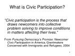 what is civic participation