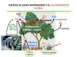 fuentes de gases invernadero y el calentamiento global