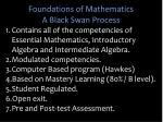 foundations of mathematics a black swan process