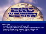 sarbanes oxley 404 where do we stand cas 2004 annual meeting november 15 16 2004