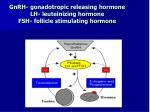 gnrh gonadotropic releasing hormone lh leuteinizing hormone fsh follicle stimulating hormone