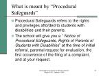 what is meant by procedural safeguards