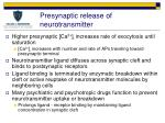 presynaptic release of neurotransmitter1