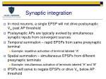 synaptic integration