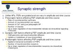 synaptic strength