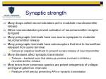 synaptic strength1