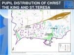 pupil distribution of christ the king and st teresa