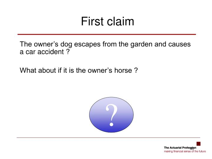 The owner's dog escapes from the garden and causes a car accident ?