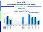 district wide 2008 09 adequate yearly progress ayp criteria summary1