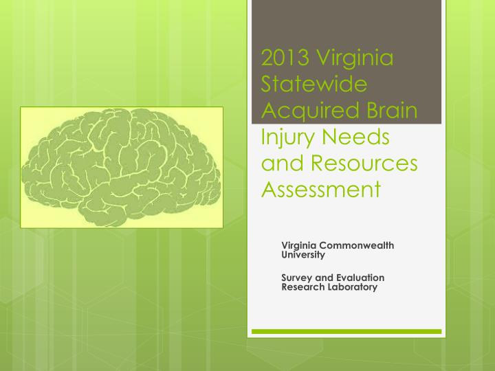 2013 virginia statewide acquired brain injury needs and resources assessment n.