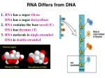 rna differs from dna