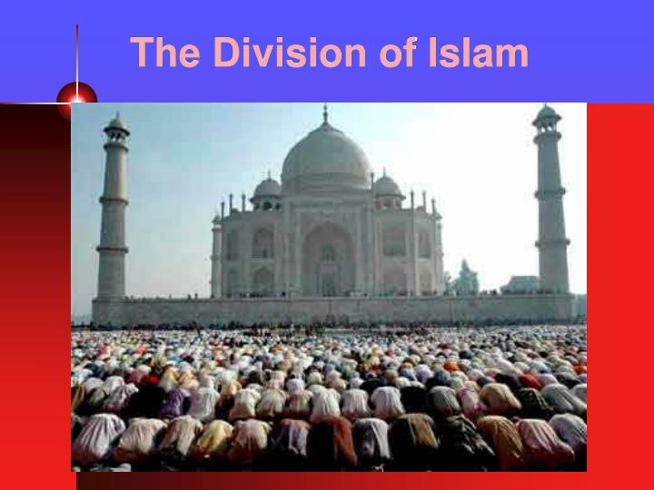 the division of islam n.