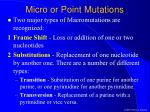 micro or point mutations