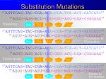 substitution mutations