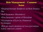 risk management common sense