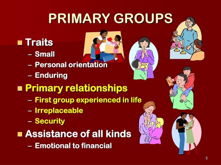PRIMARY GROUPS