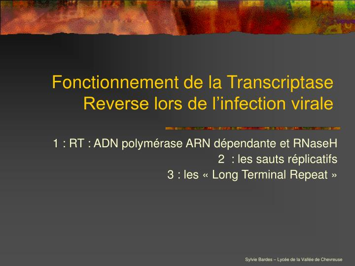 fonctionnement de la transcriptase reverse lors de l infection virale n.