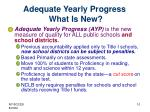 adequate yearly progress what is new