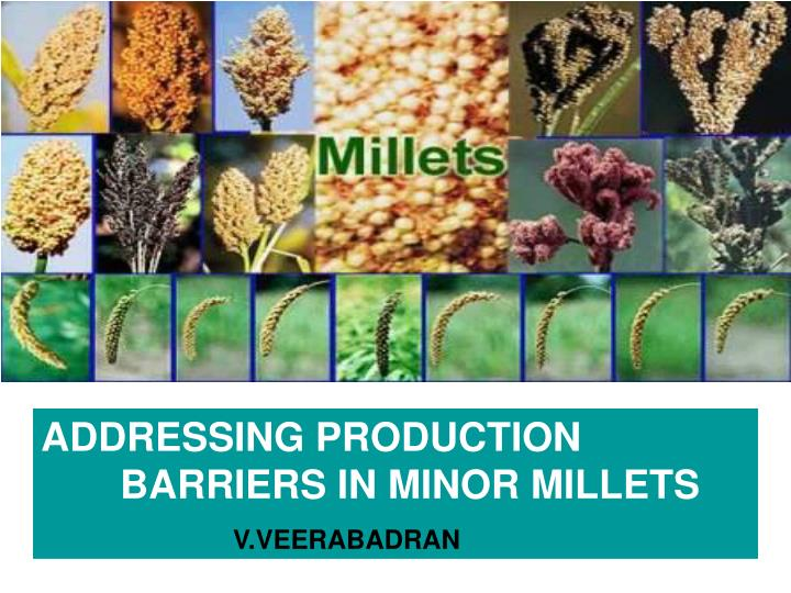 ADDRESSING PRODUCTION       BARRIERS IN MINOR MILLETS