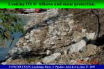looking ds @ willows and stone protection