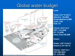 global water budget