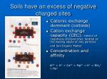 soils have an excess of negative charged sites