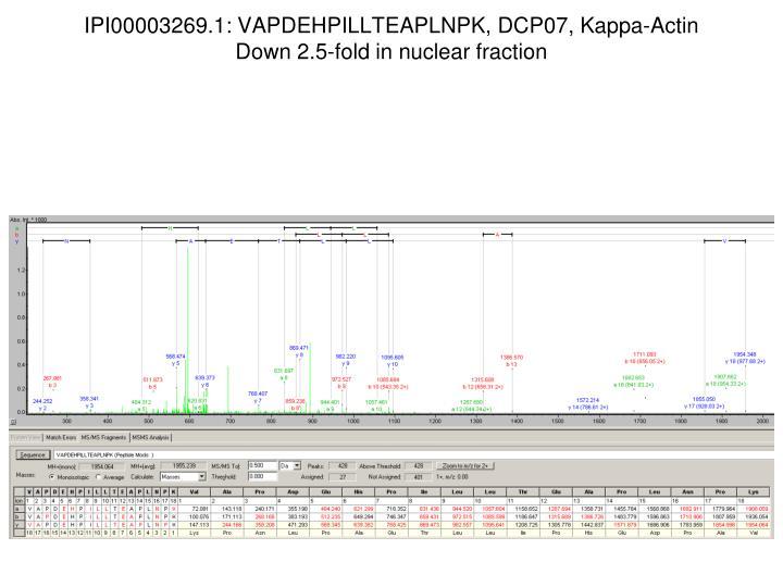 IPI00003269.1: VAPDEHPILLTEAPLNPK, DCP07, Kappa-Actin