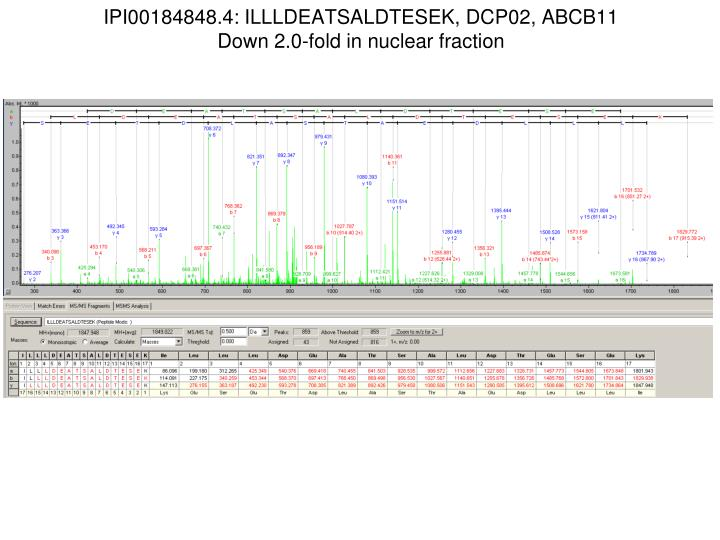 ipi00184848 4 illldeatsaldtesek dcp02 abcb11 down 2 0 fold in nuclear fraction n.