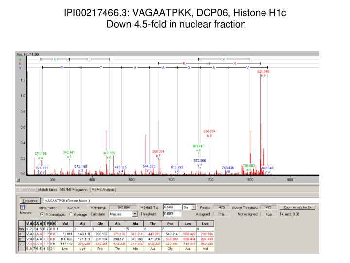 IPI00217466.3: VAGAATPKK, DCP06, Histone H1c