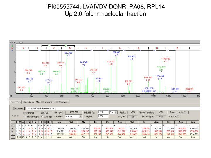 IPI00555744: LVAIVDVIDQNR, PA08, RPL14