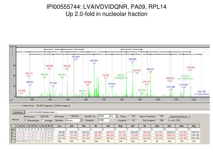 IPI00555744: LVAIVDVIDQNR, PA09, RPL14