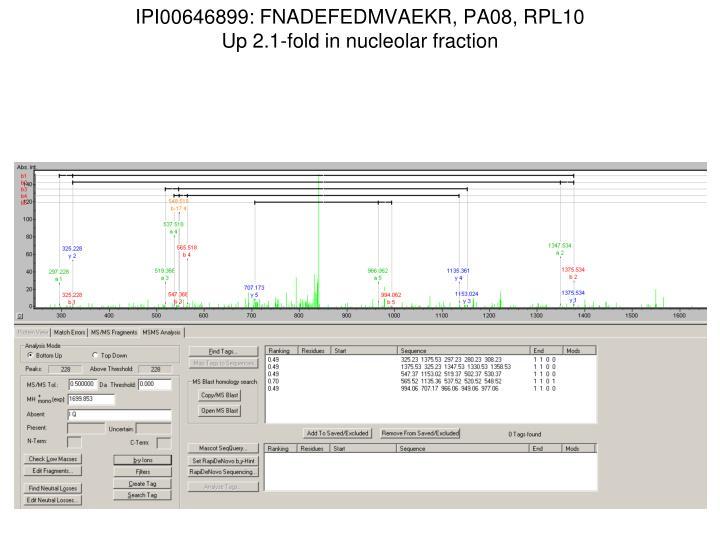 IPI00646899: FNADEFEDMVAEKR, PA08, RPL10