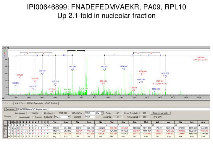 IPI00646899: FNADEFEDMVAEKR, PA09, RPL10