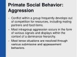 primate social behavior aggression