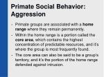 primate social behavior aggression1