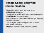 primate social behavior communication