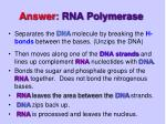 answer rna polymerase