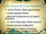 urine primer urine sekunder