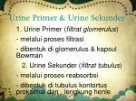 urine primer urine sekunder1
