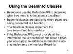 using the beaninfo classes