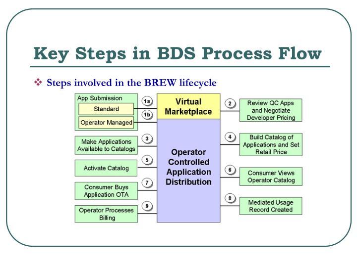 Key Steps in BDS Process Flow