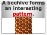 a beehive forms an interesting pattern