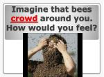 imagine that bees crowd around you how would you feel