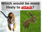 which would be more likely to attack