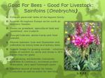 good for bees good for livestock sainfoins onobrychis