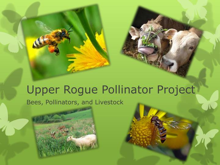 upper rogue pollinator project n.